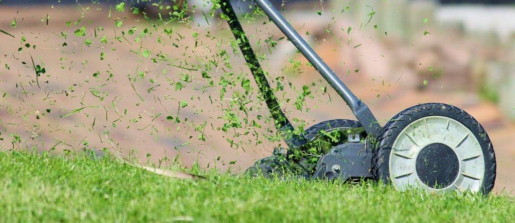 Welcher Rasenmäher für kleinen Garten