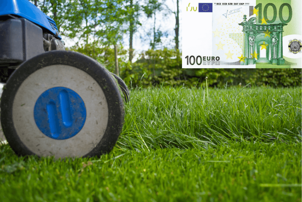 Rasenmäher bis 100 Euro